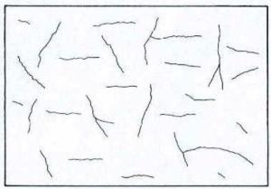 Imagen Patologia del Hormigonretracción plastica